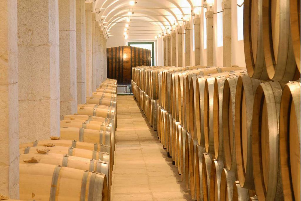 Marquis of Pombal Palace Cellar