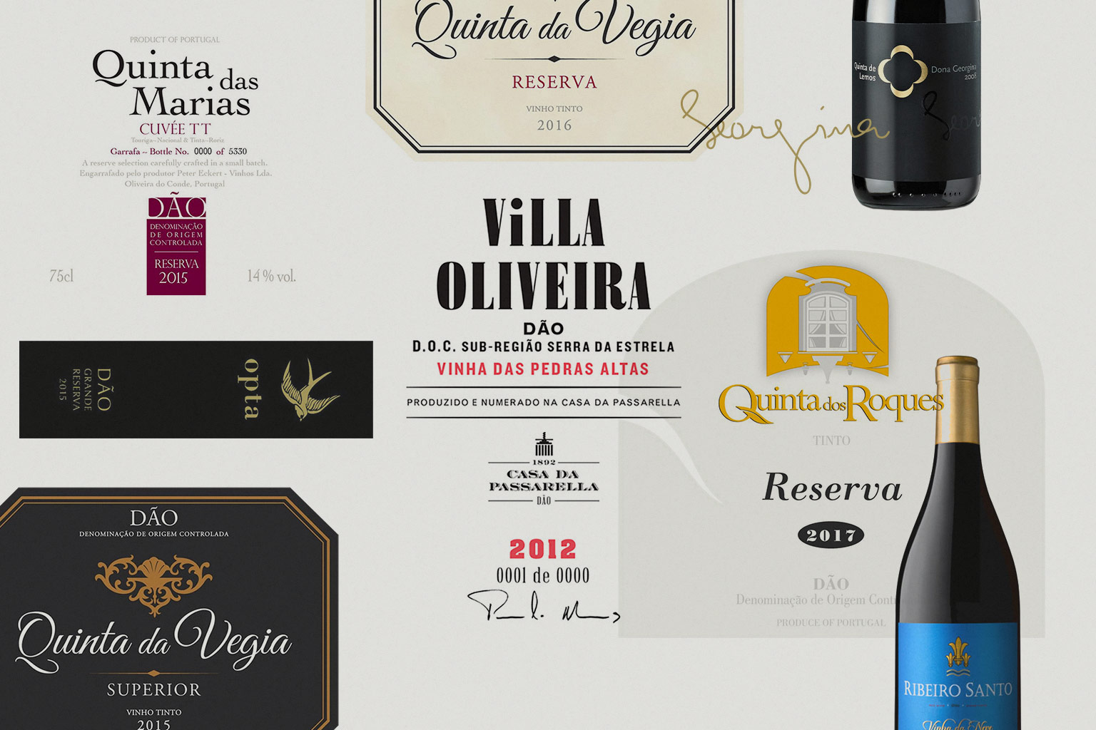 Red wines from Dão, the Portuguese art of blending